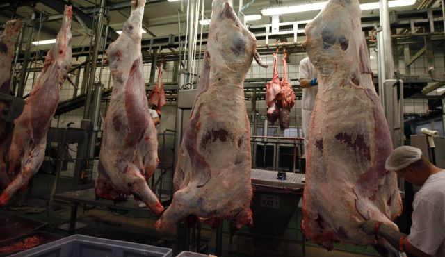 Animal Slaughter, Usually Hidden From View, Provokes Public Debate