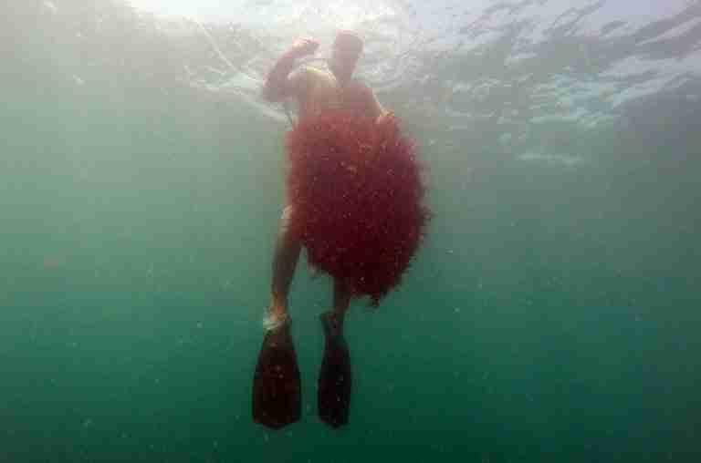 MOROCCO-ENVIRONMENT-SEAWEED-SOCIAL