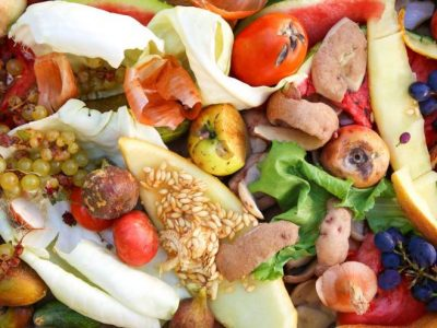 are we ready to eliminate food waste